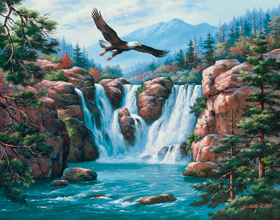 Soaring eagle mural for Bird mural wallpaper