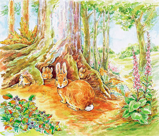 Flopsy mopsy cotton tail peter mural beatrix potter for Beatrix potter mural wallpaper