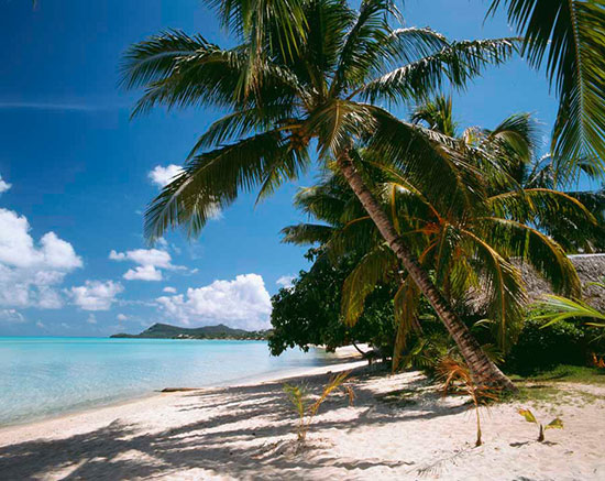 Beach and tropical murals page 2 murals your way for Bora bora wall mural