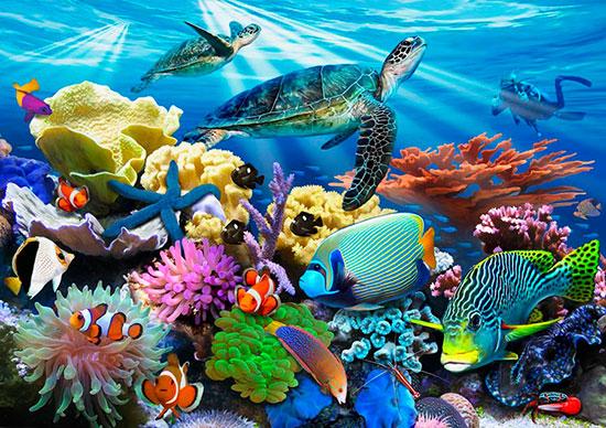 Reef life mural for Coral reef mural