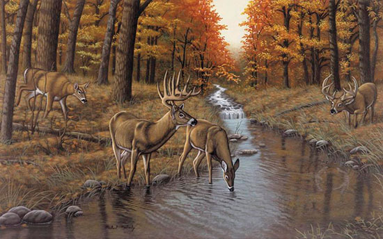 Symond 39 s creek mural michael matherly murals your way for Deer wallpaper mural